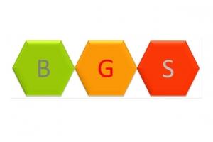 Tại sao nên chọn BGS